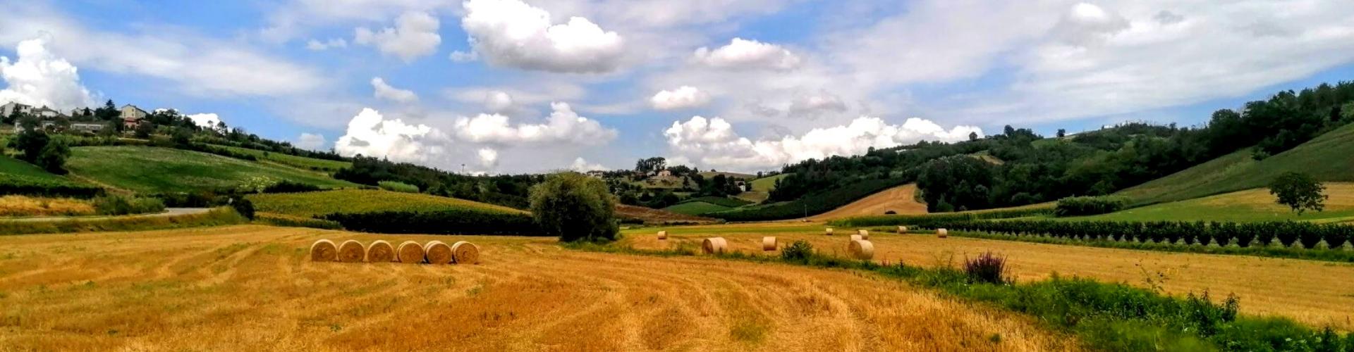 golf margara Monferrato